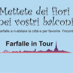 FARFALLE IN TOUR